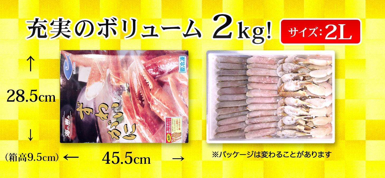 中央卸売市場 生ズワイガニ 2Lサイズ 2kg 水研